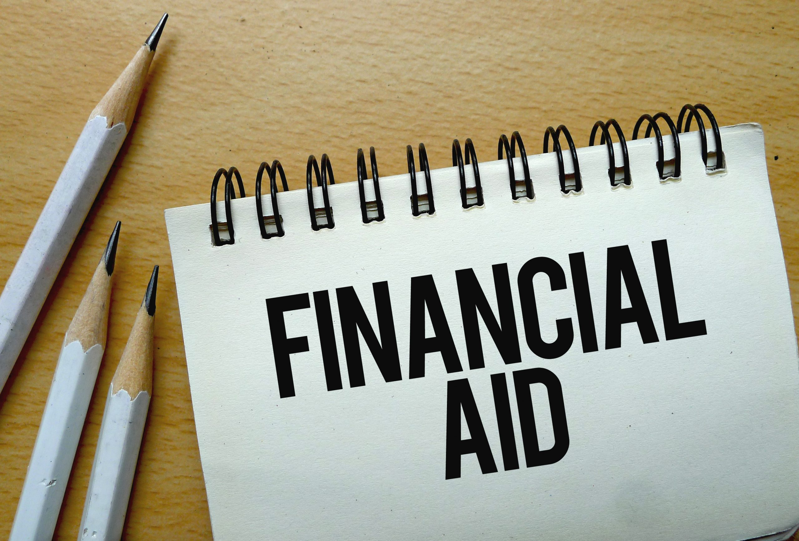 Special financial aid for small businesses in Vienna
